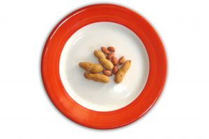 Snack Plate of Peanuts